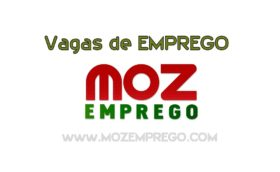 Recruta-se Assistente De Marketing